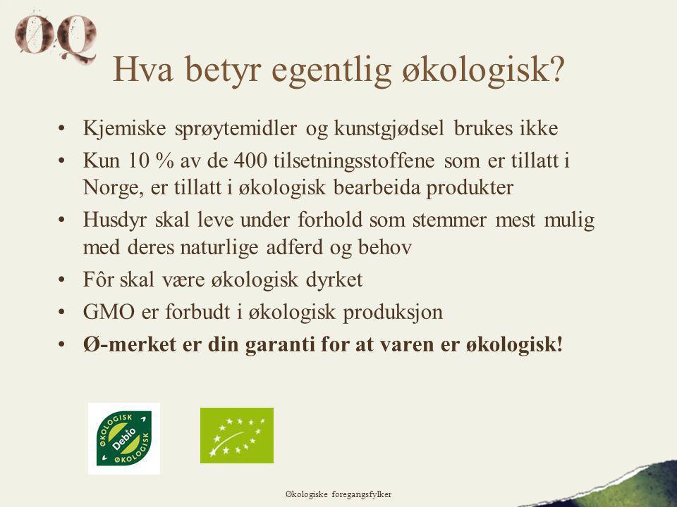 Hva betyr egentlig økologisk.
