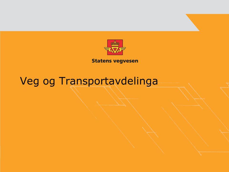 Veg og Transportavdelinga