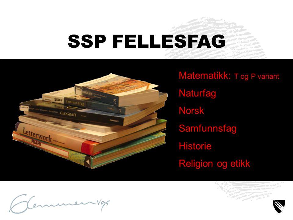Matematikk: T og P variant Naturfag Norsk Samfunnsfag Historie Religion og etikk