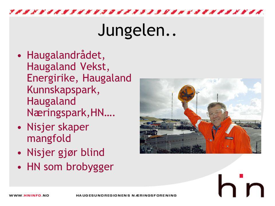 Jungelen.. •Haugalandrådet, Haugaland Vekst, Energirike, Haugaland Kunnskapspark, Haugaland Næringspark,HN…. •Nisjer skaper mangfold •Nisjer gjør blin