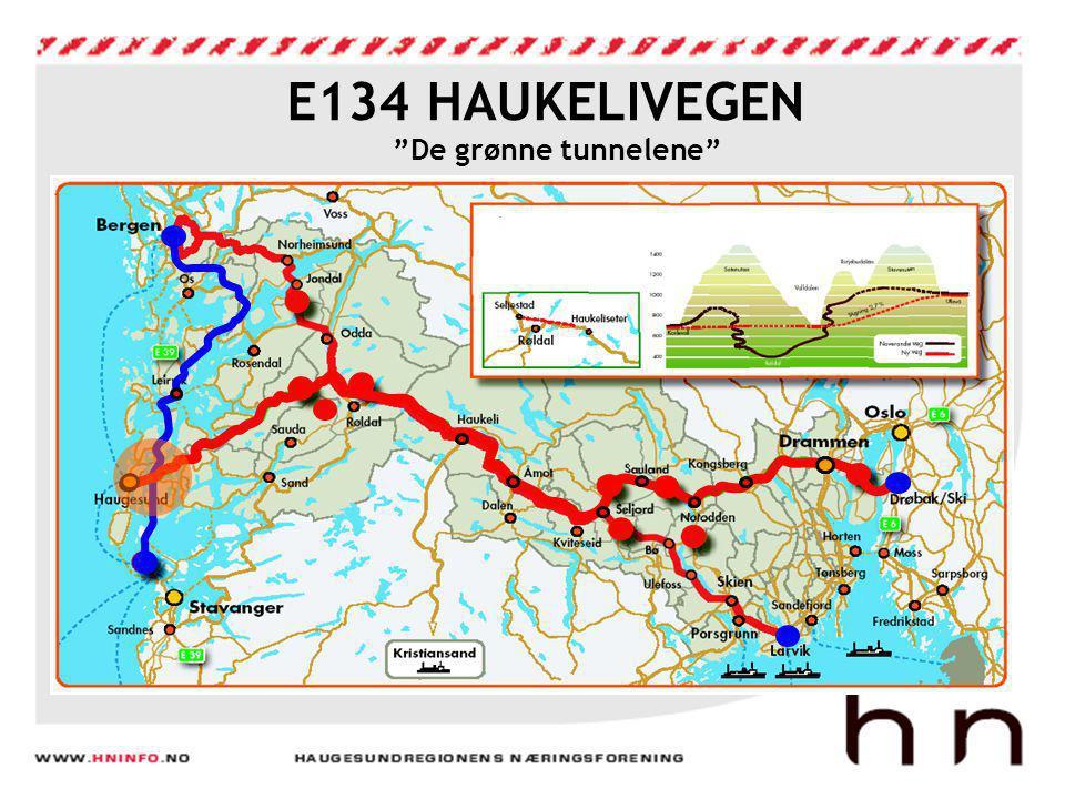 """E134 HAUKELIVEGEN """"De grønne tunnelene"""""""