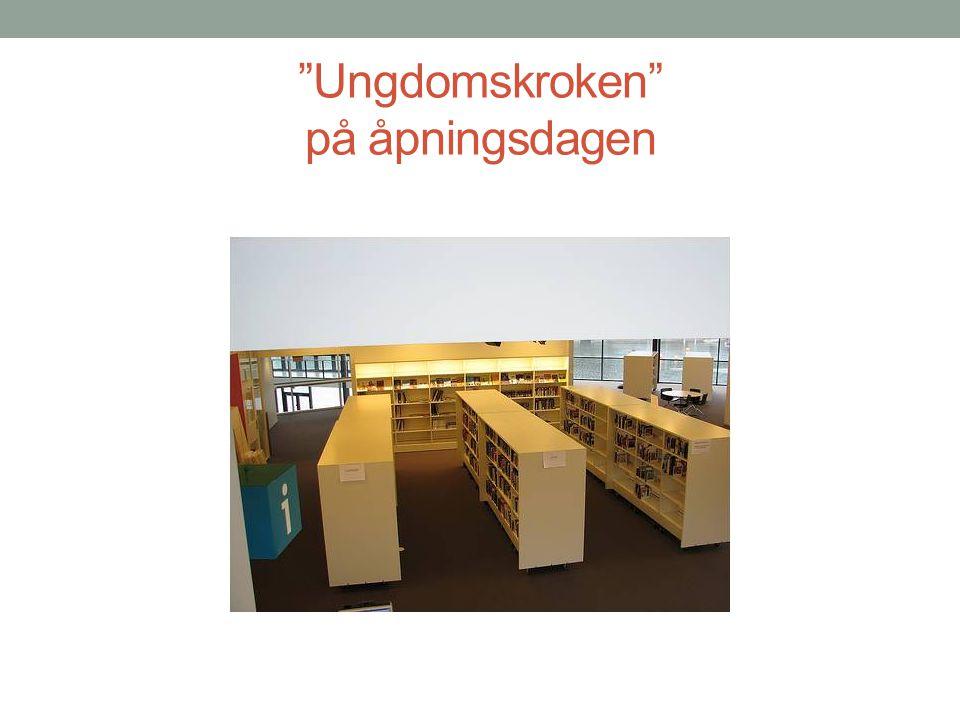 Popkult-hylla • Fagbøker for ungdom • Subkultur, særinteresser og populærkultur • Bøker de ikke forventer å finne i et bibliotek.
