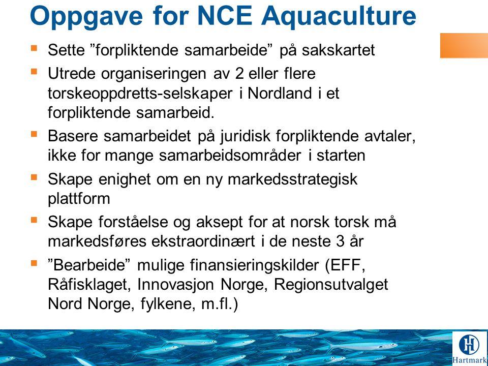 Oppgave for NCE Aquaculture  Sette forpliktende samarbeide på sakskartet  Utrede organiseringen av 2 eller flere torskeoppdretts-selskaper i Nordland i et forpliktende samarbeid.
