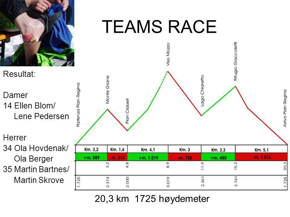 TEAMS RACE Resultat: Damer 14 Ellen Blom/ Lene Pedersen Herrer 34 Ola Hovdenak/ Ola Berger 35 Martin Bartnes/ Martin Skrove 20,3 km 1725 høydemeter