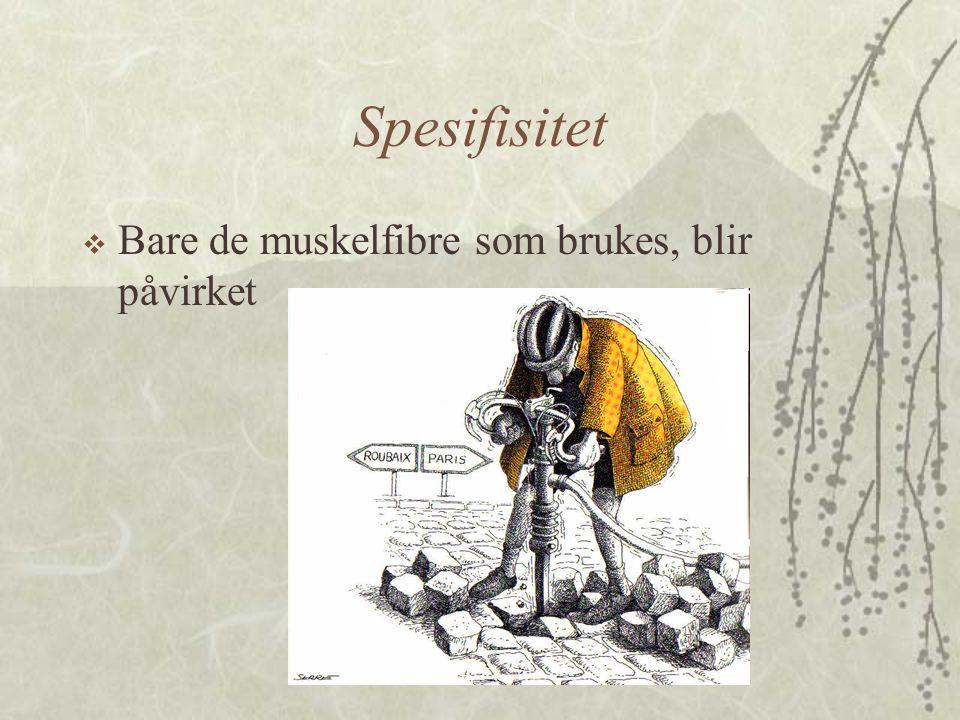 Spesifisitet  Bare de muskelfibre som brukes, blir påvirket