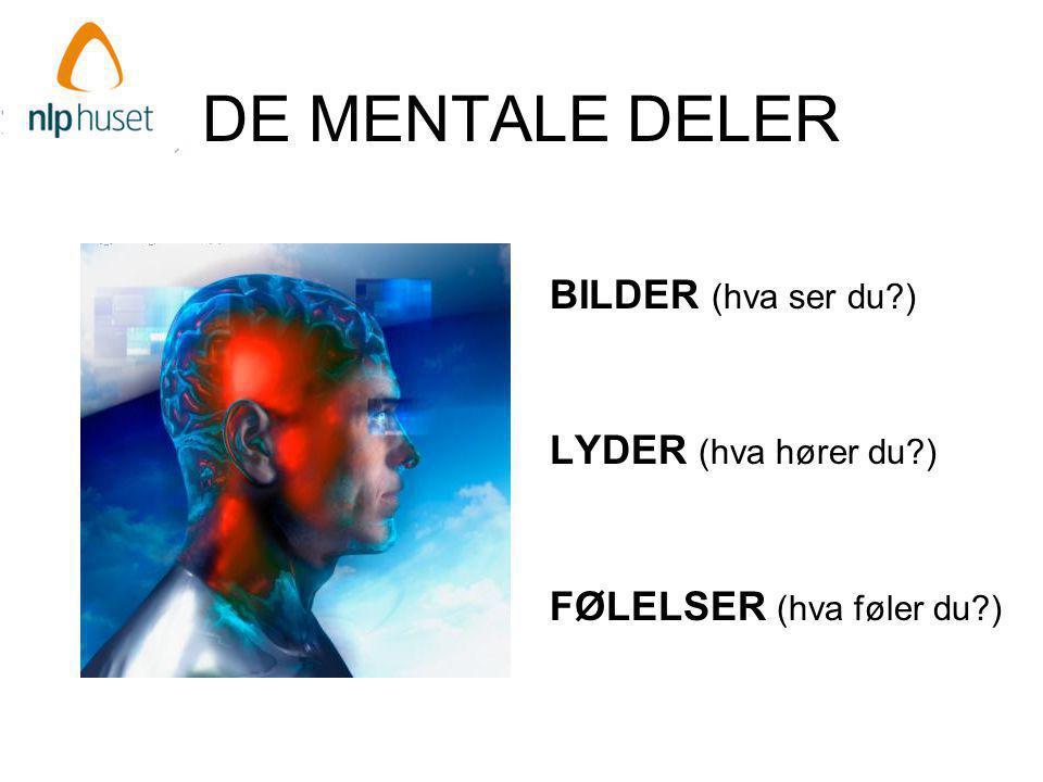 DE MENTALE DELER BILDER (hva ser du?) LYDER (hva hører du?) FØLELSER (hva føler du?)
