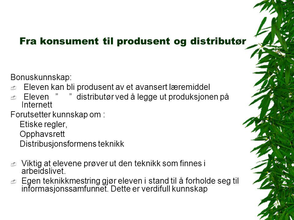 Den andre produksjonen Mål: En enkel produksjon med tydelig mål for innhold og uttrykksformer.