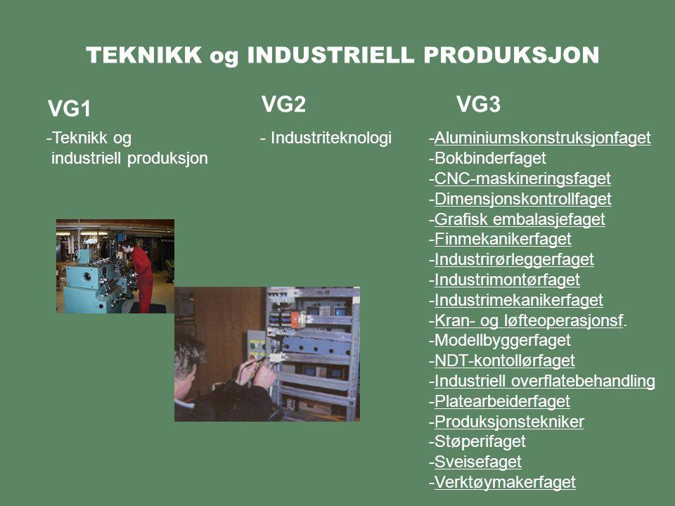 TEKNIKK og INDUSTRIELL PRODUKSJON VG1 -Teknikk og industriell produksjon VG2 - Industriteknologi VG3 -Aluminiumskonstruksjonfaget -Bokbinderfaget -CNC-maskineringsfaget -Dimensjonskontrollfaget -Grafisk embalasjefaget -Finmekanikerfaget -Industrirørleggerfaget -Industrimontørfaget -Industrimekanikerfaget -Kran- og løfteoperasjonsf.