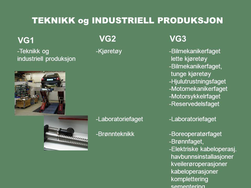 TEKNIKK og INDUSTRIELL PRODUKSJON VG1 -Teknikk og industriell produksjon VG2VG3 -Bilmekanikerfaget lette kjøretøy -Bilmekanikerfaget, tunge kjøretøy -Hjulutrustningsfaget -Motomekanikerfaget -Motorsykkelrfaget -Reservedelsfaget -Laboratoriefaget -Boreoperatørfaget -Brønnfaget, -Elektriske kabeloperasj.
