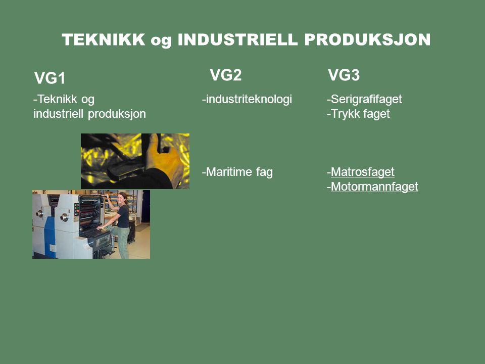 TEKNIKK og INDUSTRIELL PRODUKSJON VG1 -Teknikk og industriell produksjon VG2VG3 -Serigrafifaget -Trykk faget -Matrosfaget -Motormannfaget -industriteknologi -Maritime fag