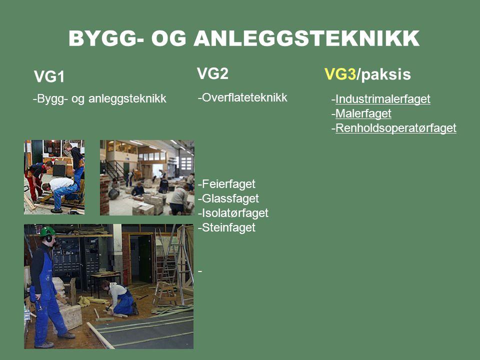 BYGG- OG ANLEGGSTEKNIKK VG1 -Bygg- og anleggsteknikk VG2 VG3/paksis -Overflateteknikk -Feierfaget -Glassfaget -Isolatørfaget -Steinfaget -Industrimalerfaget -Malerfaget -Renholdsoperatørfaget