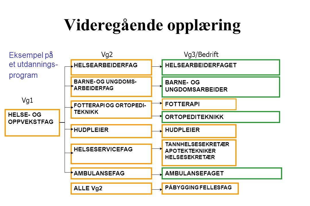 Videregående opplæring Vg2Vg3/Bedrift HELSE- OG OPPVEKSTFAG HELSEARBEIDERFAG BARNE- OG UNGDOMS- ARBEIDERFAG FOTTERAPI OG ORTOPEDI- TEKNIKK HELSESERVICEFAG AMBULANSEFAG ALLE Vg2 HUDPLEIER HELSEARBEIDERFAGET BARNE- OG UNGDOMSARBEIDER HUDPLEIER FOTTERAPI TANNHELSESEKRETÆR APOTEKTEKNIKER HELSESEKRETÆR AMBULANSEFAGET PÅBYGGING FELLESFAG Vg1 Eksempel p å et utdannings- program ORTOPEDITEKNIKK