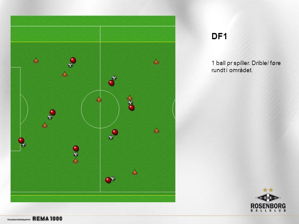 DF1 1 ball pr spiller. Drible/ føre rundt i området.