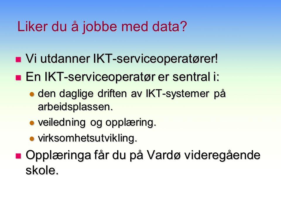 Alle udanningsprogram yrkesfaglig og studiespesialisering IKT-Servicefag IKT-Servicefaget Utdanningsløp IKT-servicefag VG 3 (Lærling) VG 2 VG 1