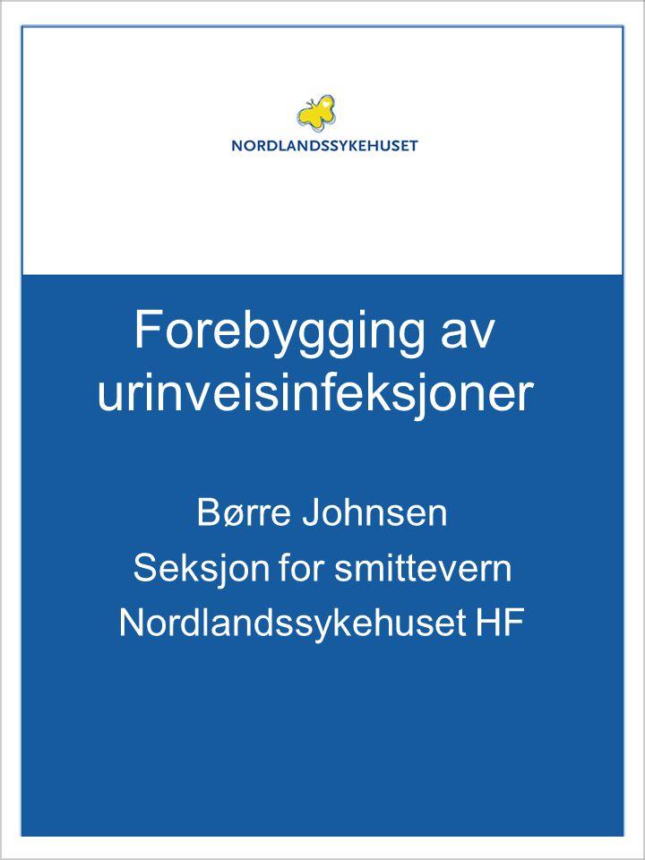 Forebygging av urinveisinfeksjoner Børre Johnsen Seksjon for smittevern Nordlandssykehuset HF