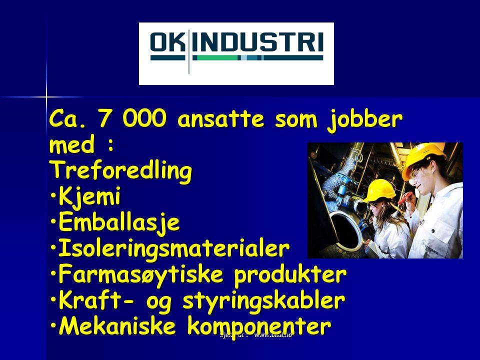 Sjekk ut : www.blitil.no Ca. 7 000 ansatte som jobber med : Treforedling •Kjemi •Emballasje •Isoleringsmaterialer •Farmasøytiske produkter •Kraft- og