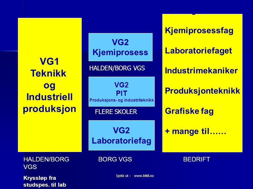 Sjekk ut : www.blitil.no VG1 Teknikk og Industriell produksjon VG2 Laboratoriefag VG2 PIT Produksjons- og industriteknikk VG2 Kjemiprosess Lærling i: