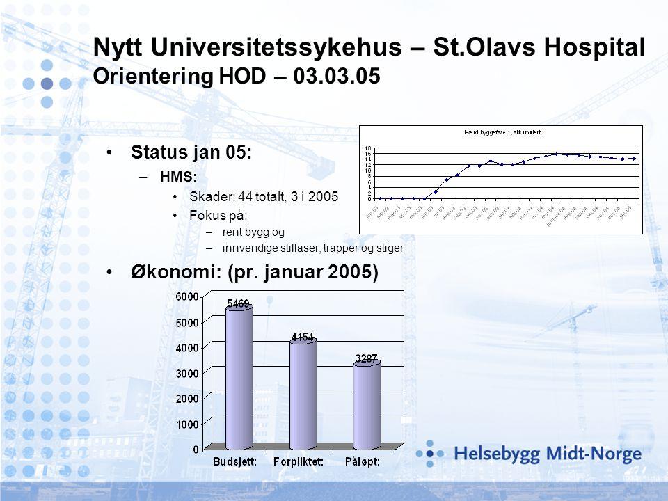 •Status jan 05: –HMS: •Skader: 44 totalt, 3 i 2005 •Fokus på: –rent bygg og –innvendige stillaser, trapper og stiger •Økonomi: (pr.