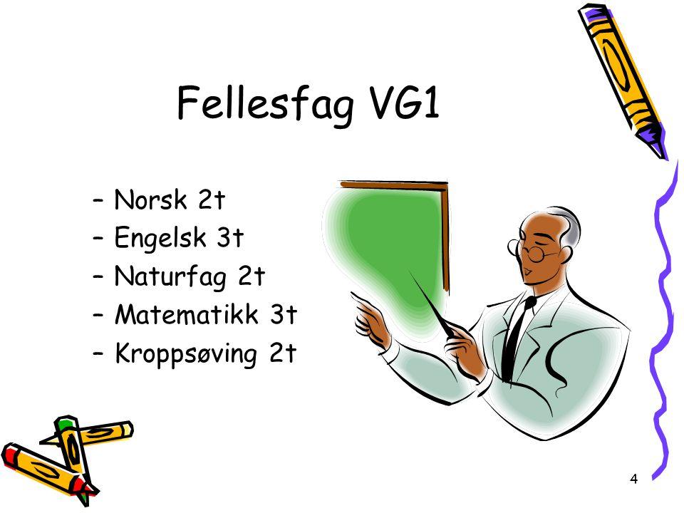 4 Fellesfag VG1 –Norsk 2t –Engelsk 3t –Naturfag 2t –Matematikk 3t –Kroppsøving 2t