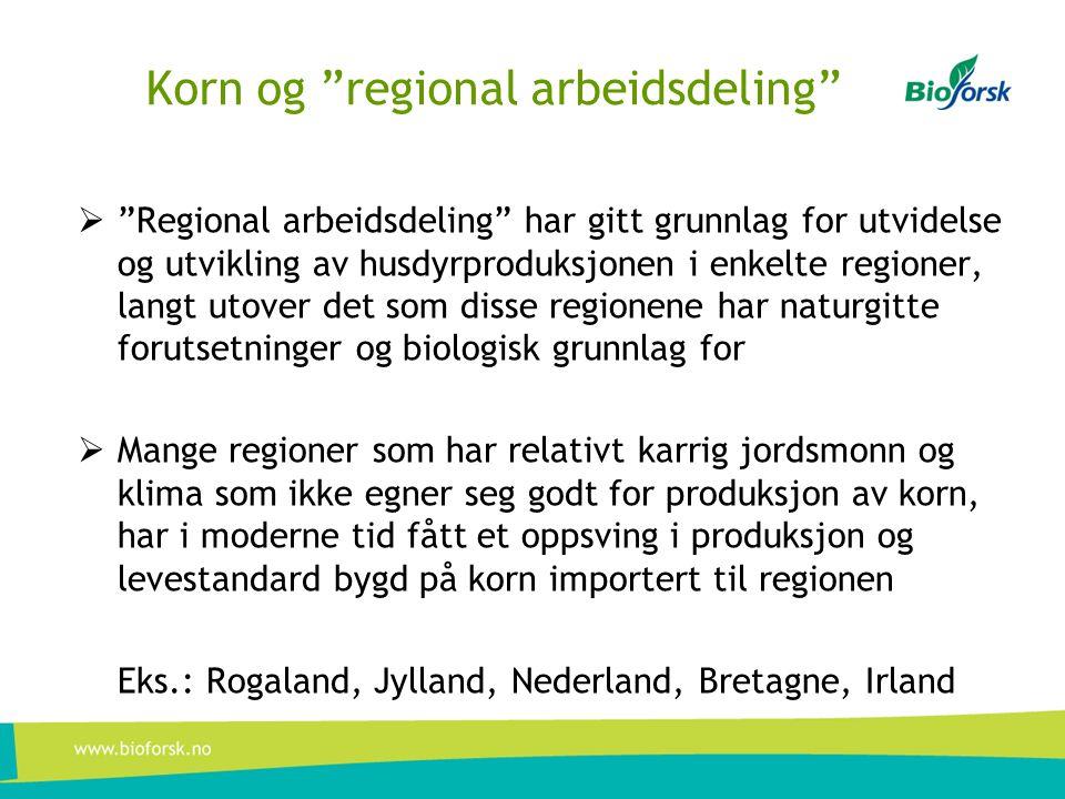 """Korn og """"regional arbeidsdeling""""  """"Regional arbeidsdeling"""" har gitt grunnlag for utvidelse og utvikling av husdyrproduksjonen i enkelte regioner, lan"""