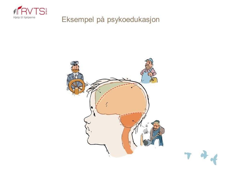Eksempel på psykoedukasjon