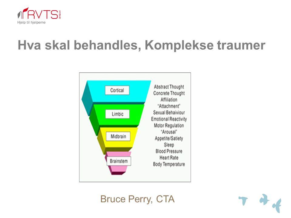 Hva skal behandles, Komplekse traumer Bruce Perry, CTA
