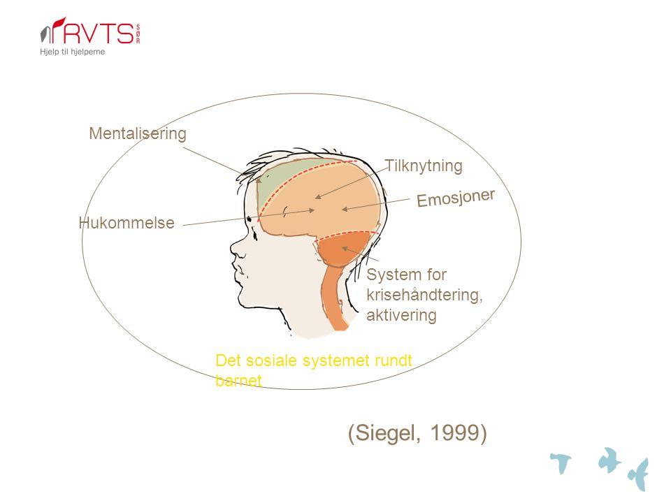 Tilknytning System for krisehåndtering, aktivering Emosjoner Hukommelse Mentalisering Det sosiale systemet rundt barnet (Siegel, 1999)
