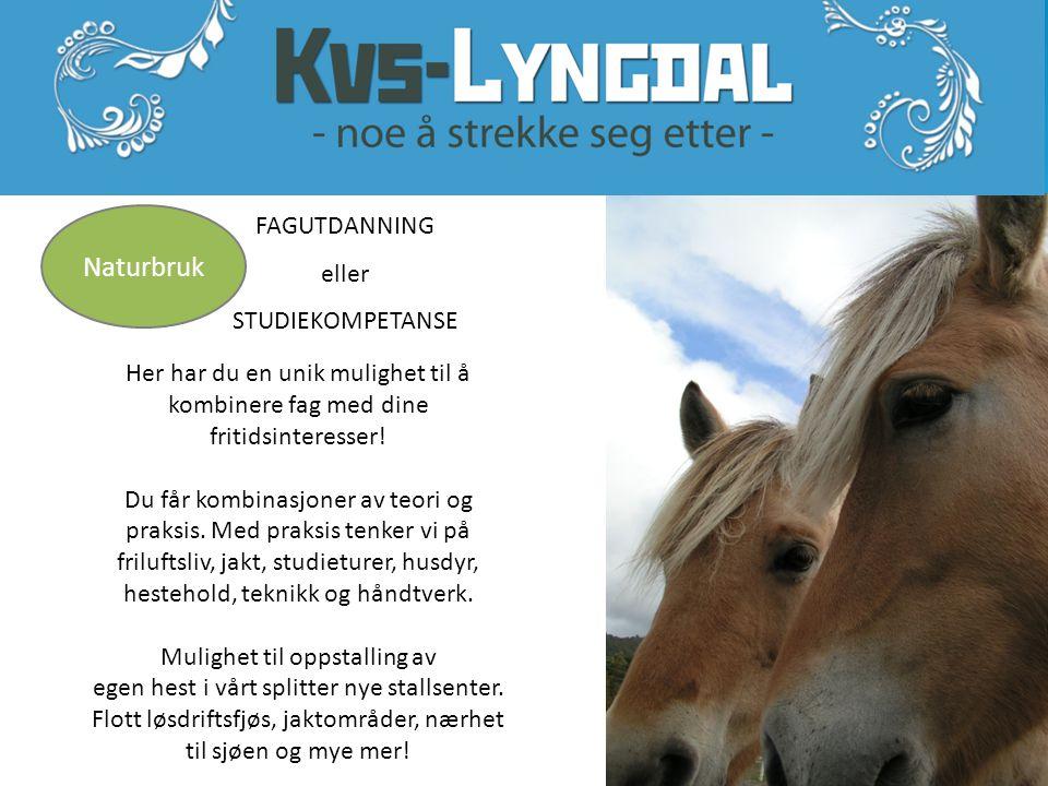 * KVS-Lyngdal har kristendom som obligatorisk programfag.