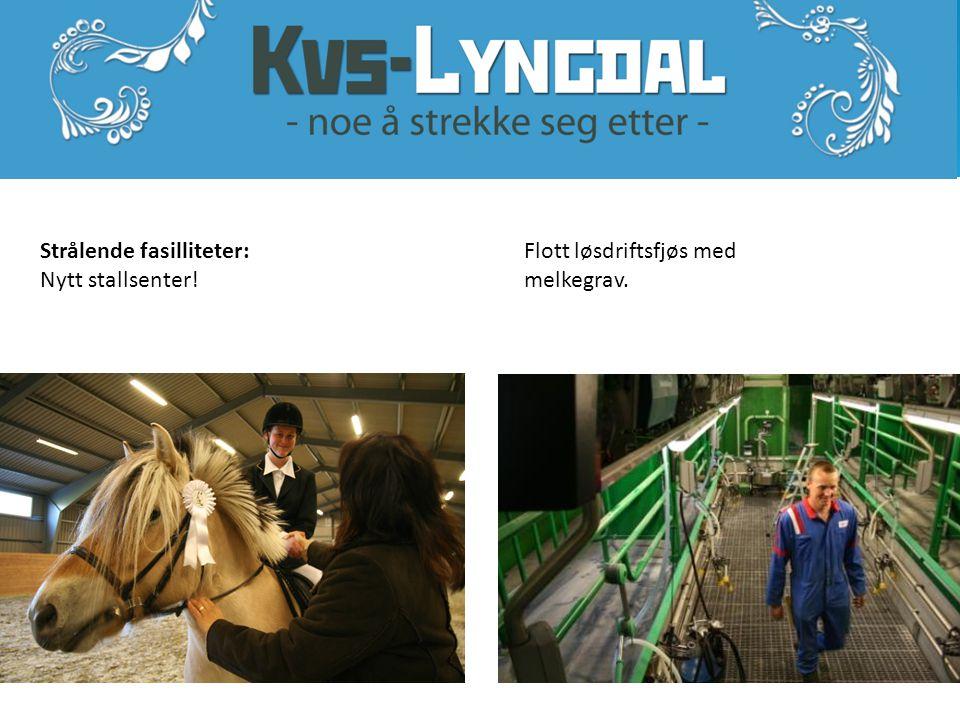 www.kvs-lyngdal.no I vg2 og vg3 kan du velge fordypning Friluftsliv/ekstremsport.