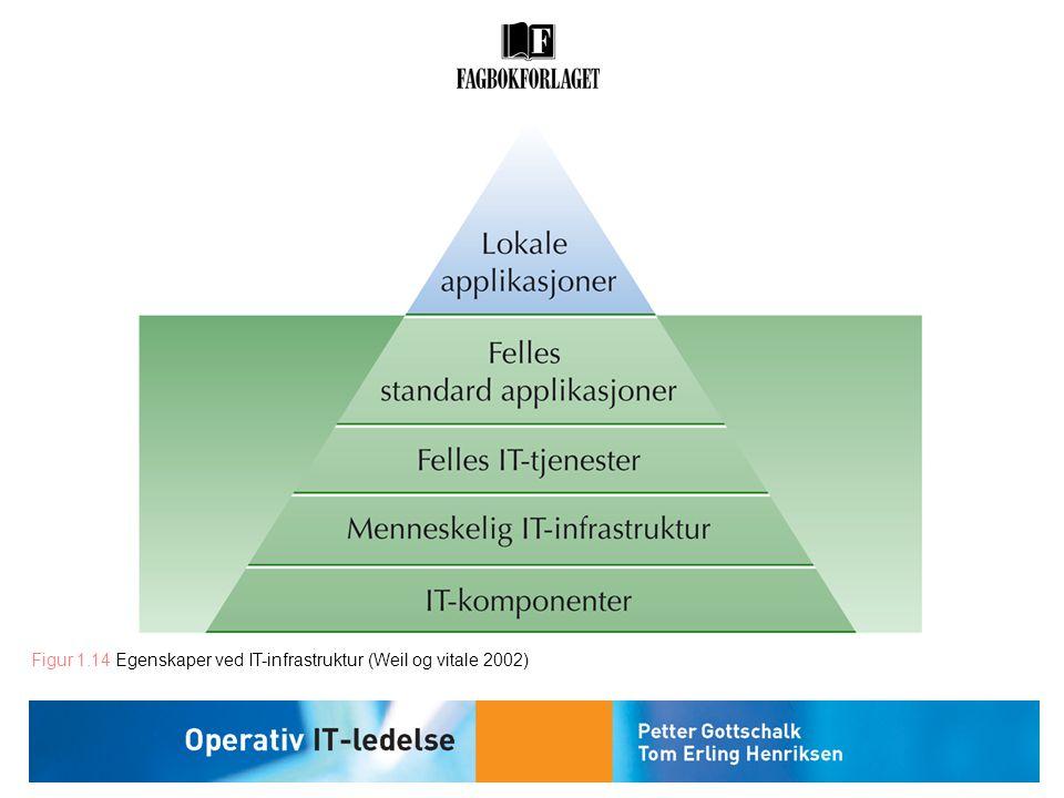 Figur 1.14 Egenskaper ved IT-infrastruktur (Weil og vitale 2002)