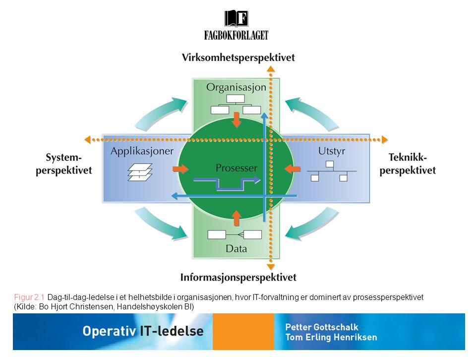 Figur 2.1 Dag-til-dag-ledelse i et helhetsbilde i organisasjonen, hvor IT-forvaltning er dominert av prosessperspektivet (Kilde: Bo Hjort Christensen,