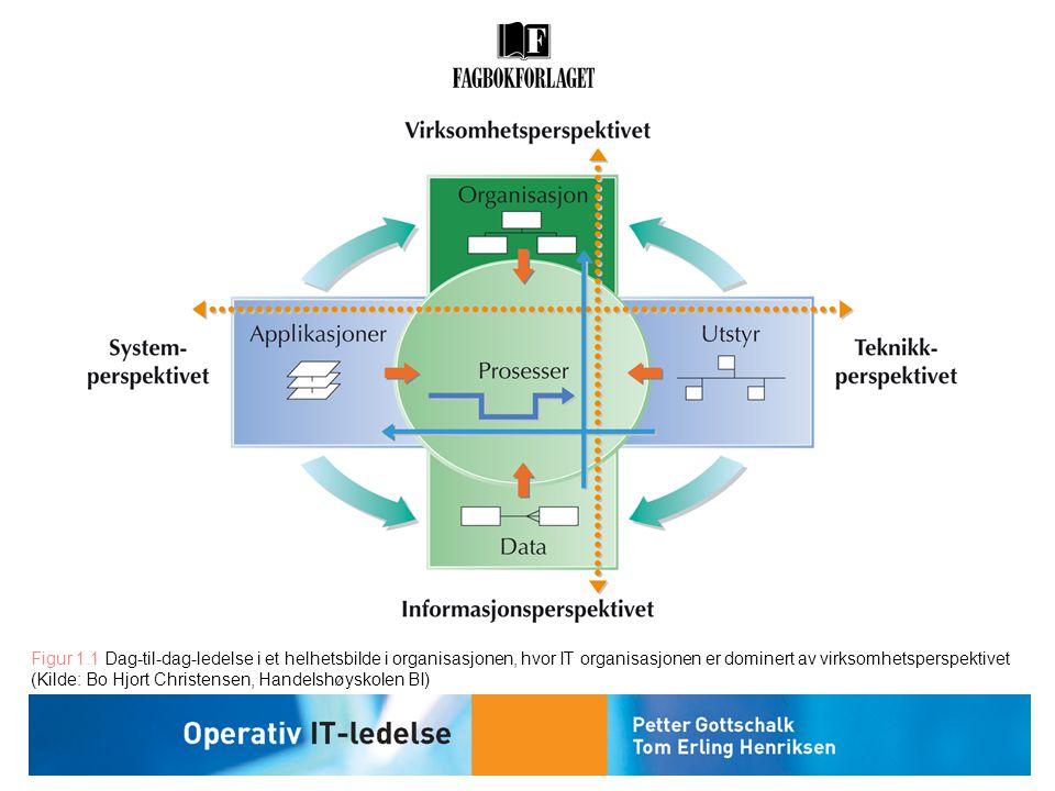 Figur 1.1 Dag-til-dag-ledelse i et helhetsbilde i organisasjonen, hvor IT organisasjonen er dominert av virksomhetsperspektivet (Kilde: Bo Hjort Chris
