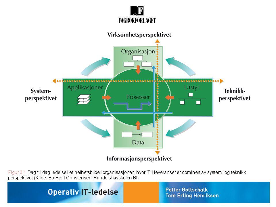 Figur 3.1 Dag-til-dag-ledelse i et helhetsbilde i organisasjonen, hvor IT i leveranser er dominert av system- og teknikk- perspektivet (Kilde: Bo Hjor