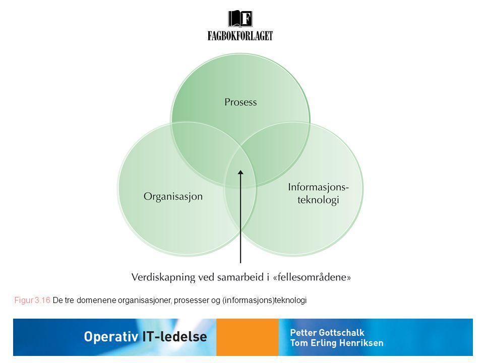 Figur 3.16 De tre domenene organisasjoner, prosesser og (informasjons)teknologi