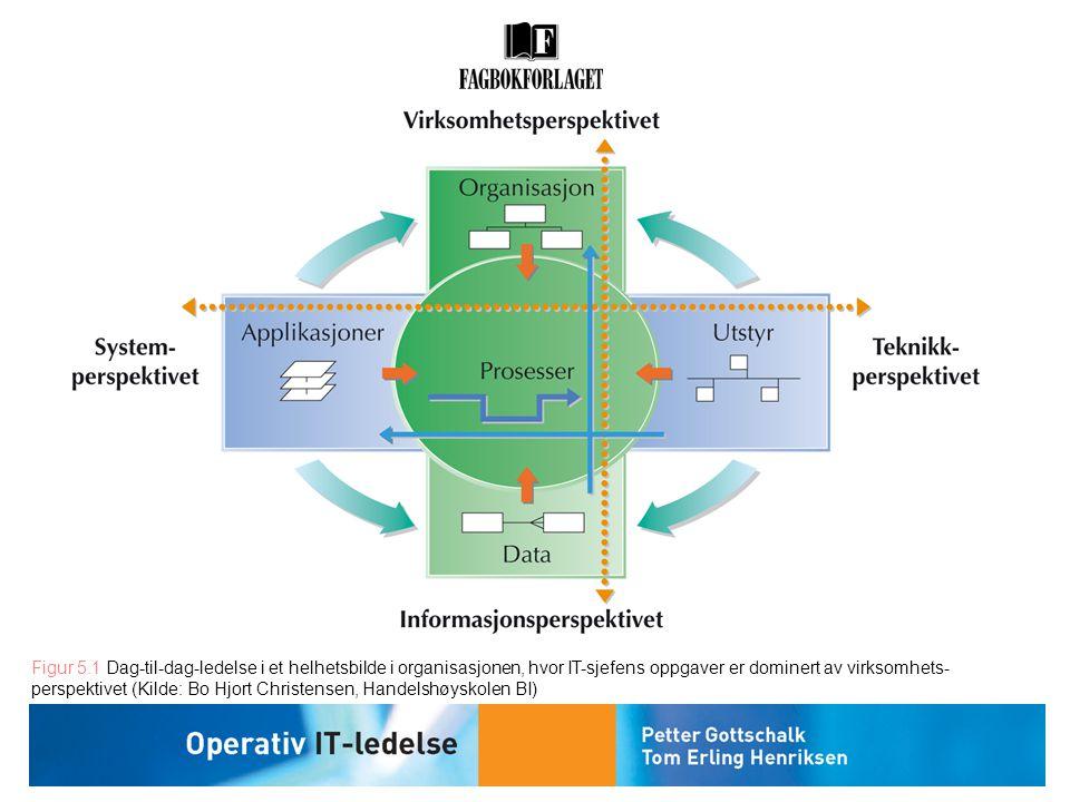 Figur 5.1 Dag-til-dag-ledelse i et helhetsbilde i organisasjonen, hvor IT-sjefens oppgaver er dominert av virksomhets- perspektivet (Kilde: Bo Hjort C