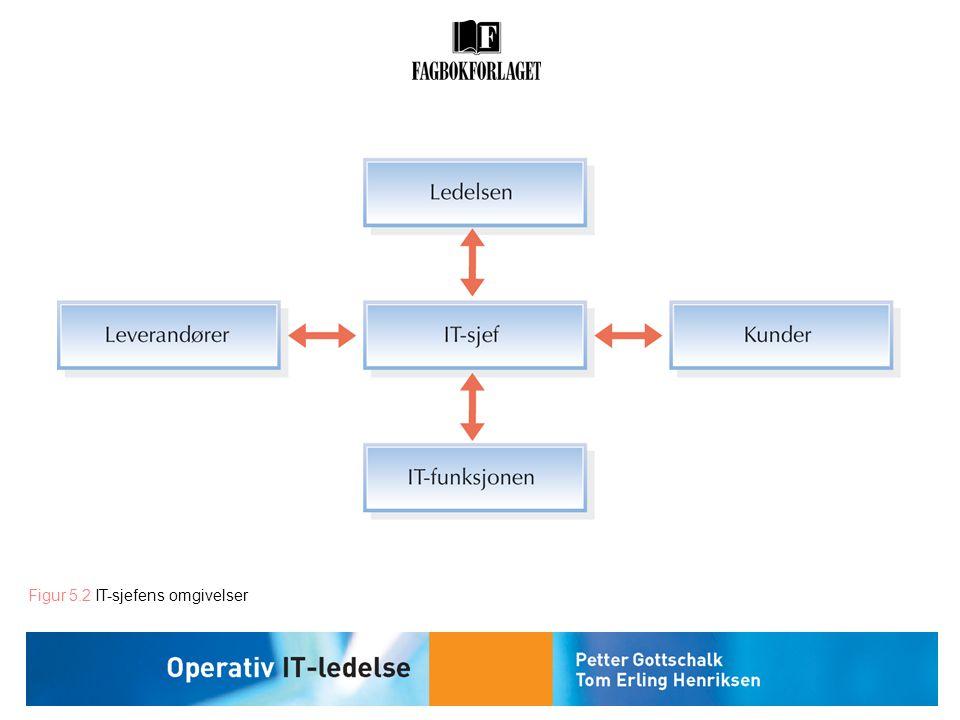Figur 5.2 IT-sjefens omgivelser