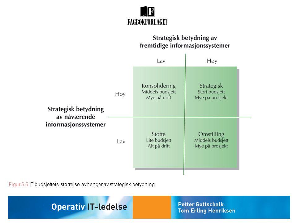 Figur 5.5 IT-budsjettets størrelse avhenger av strategisk betydning