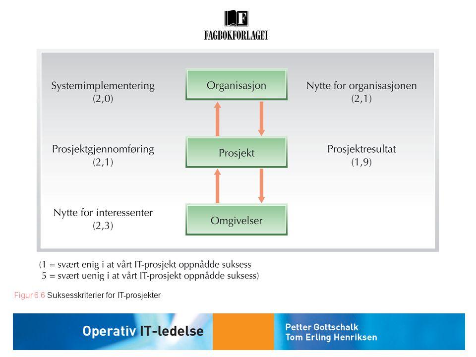 Figur 6.6 Suksesskriterier for IT-prosjekter