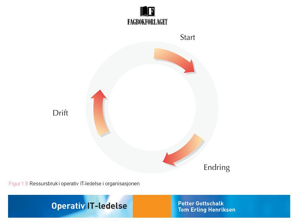 Figur 1.8 Ressursbruk i operativ IT-ledelse i organisasjonen