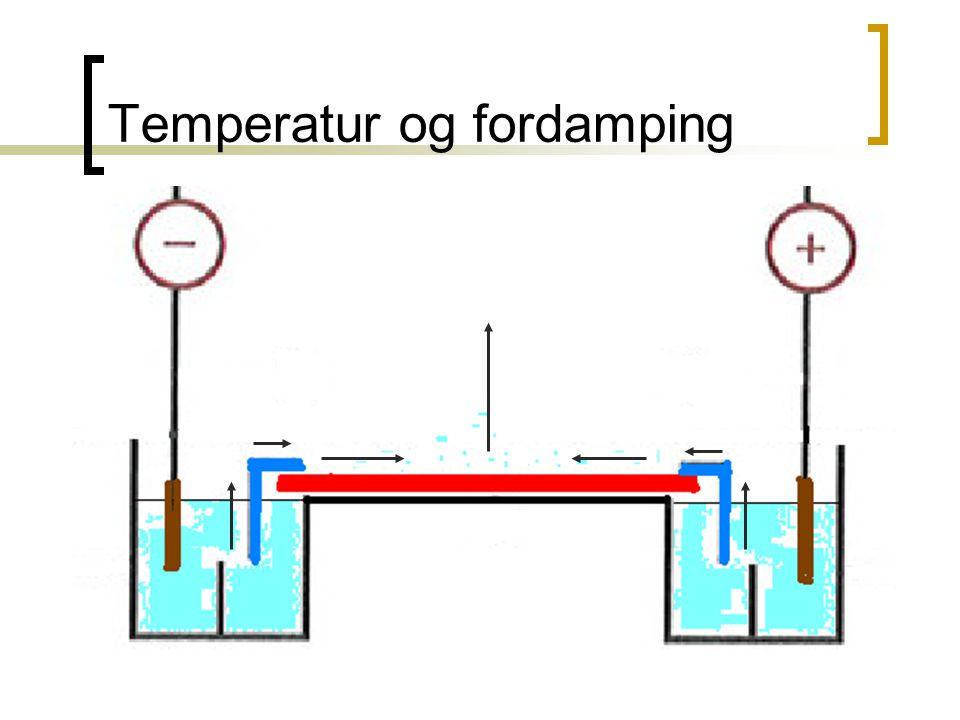Temperatur og fordamping