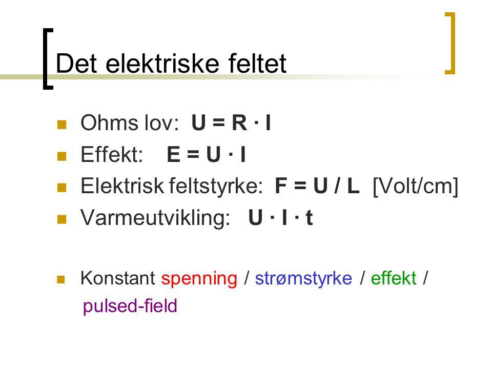 Det elektriske feltet  Ohms lov: U = R · I  Effekt: E = U · I  Elektrisk feltstyrke: F = U / L [Volt/cm]  Varmeutvikling: U · I · t  Konstant spe