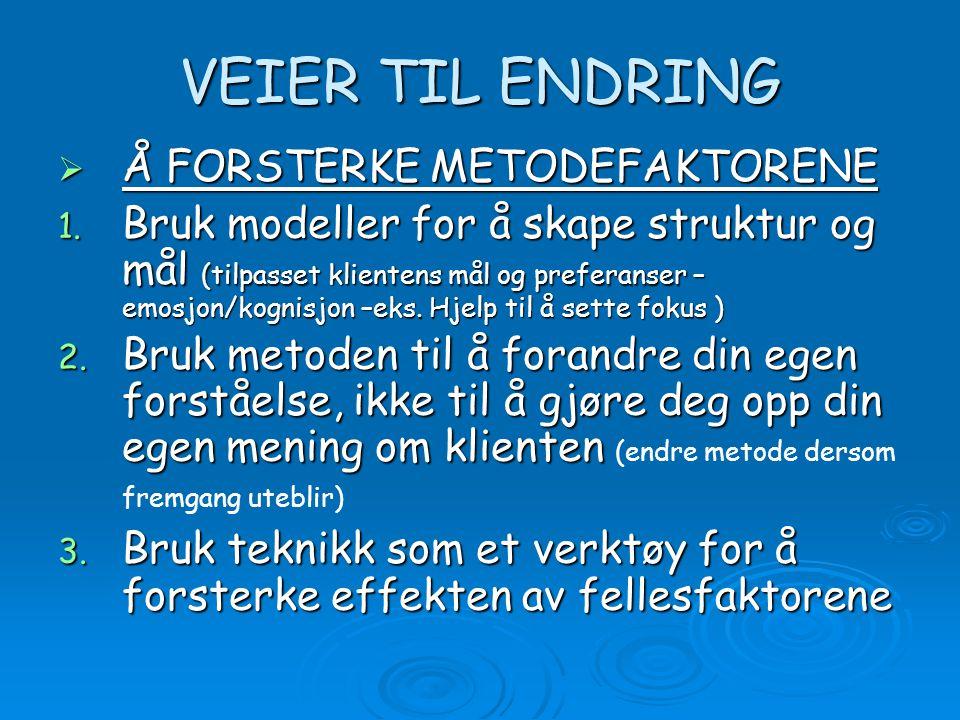 VEIER TIL ENDRING  Å FORSTERKE METODEFAKTORENE 1.