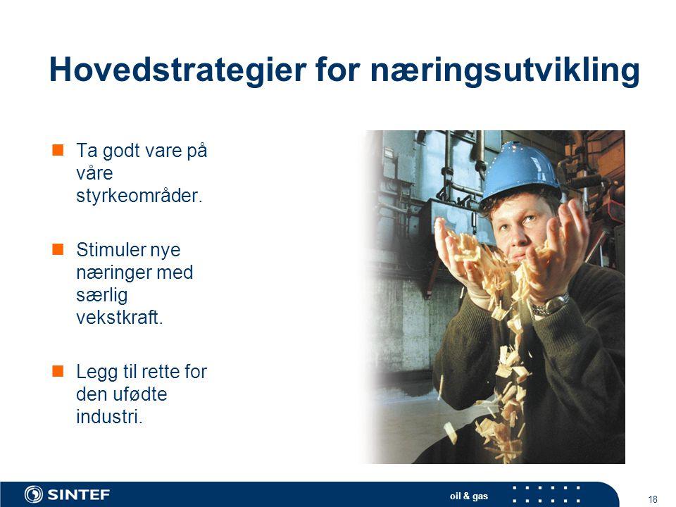 oil & gas 18 Hovedstrategier for næringsutvikling  Ta godt vare på våre styrkeområder.  Stimuler nye næringer med særlig vekstkraft.  Legg til rett