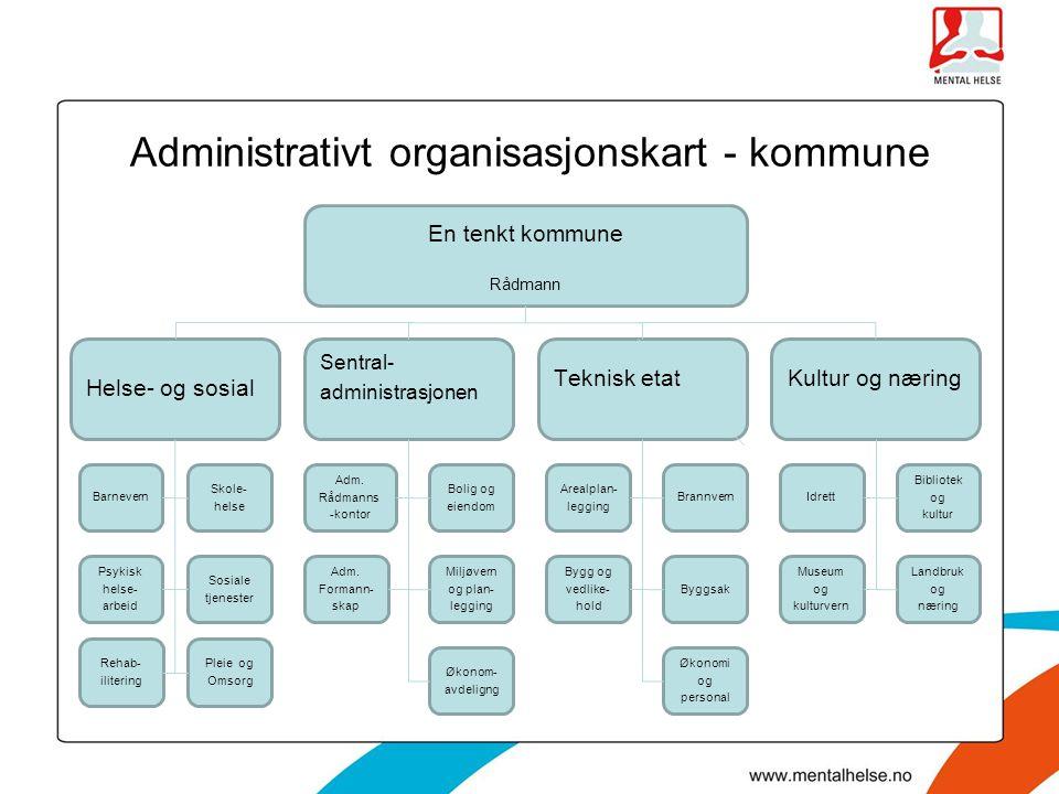 Administrativt organisasjonskart - kommune En tenkt kommune Rådmann Kultur og næringTeknisk etat Sentral- administrasjonen Helse- og sosial Barnevern