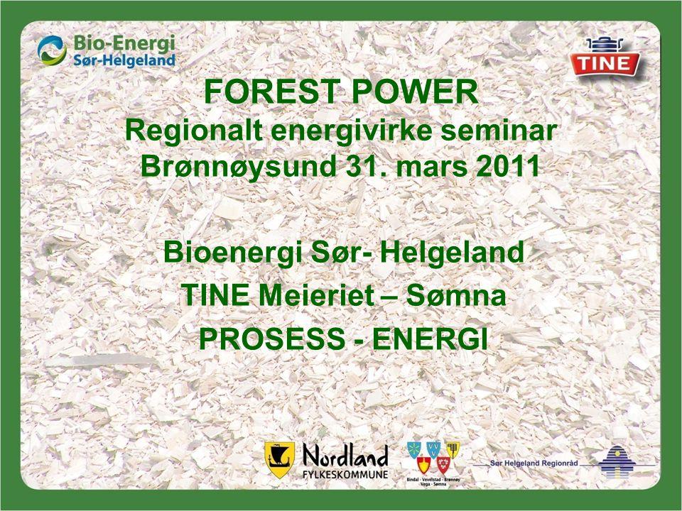FOREST POWER Regionalt energivirke seminar Brønnøysund 31.