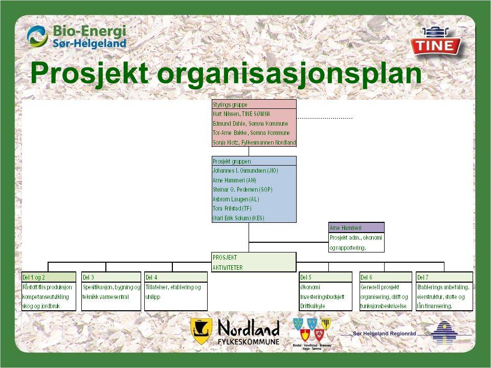 Prosjekt organisasjonsplan