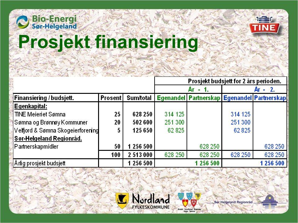 Prosjekt finansiering