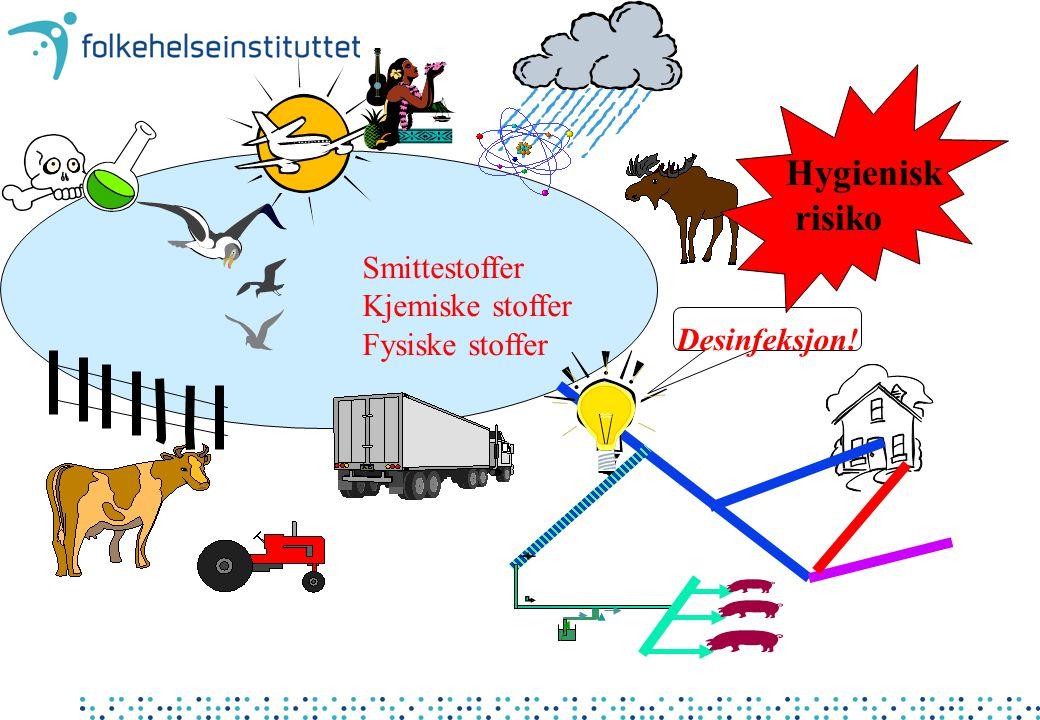 Smittestoffer Kjemiske stoffer Fysiske stoffer Desinfeksjon! Hygienisk risiko