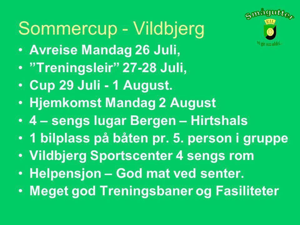 Følgende innstilling fra trenerne foreligger: PrioritetCupDato - tidsromStedLand 1.Vildbjerg Cup26 Juli - 1 Aug.VildbjergDanmark 2.Plussbank Cup23 Juni – 30 JuniKristiansandNorge Prioritet nr.