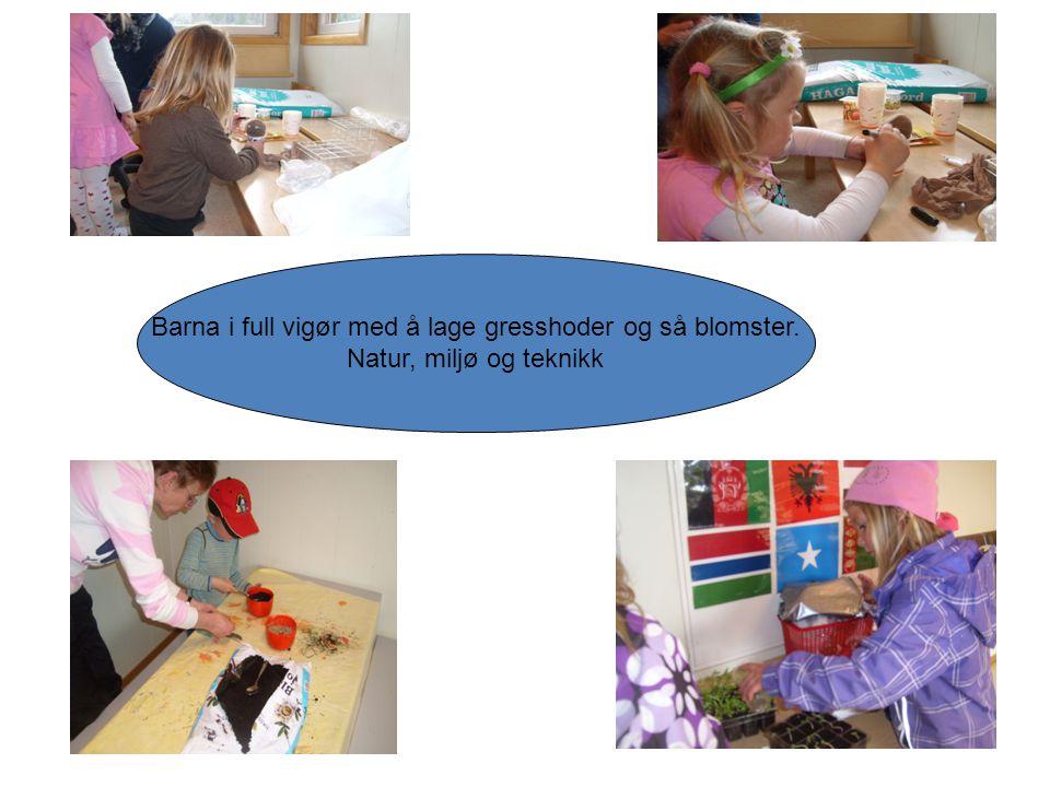 Barna i full vigør med å lage gresshoder og så blomster. Natur, miljø og teknikk